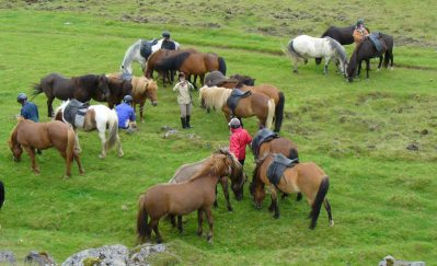 Fjallabak Tour- ride Icelandic horses on this equestrian holiday in Iceland